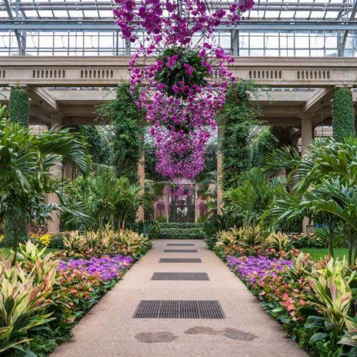 Floral display at Longwood Gardens