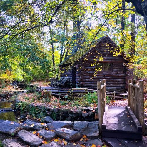 Morris Arboretum Cabin